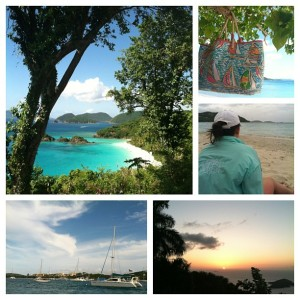 Pic Stitch. Great Photo Editing Apps for you iphone and ipad www.flonmymind.com
