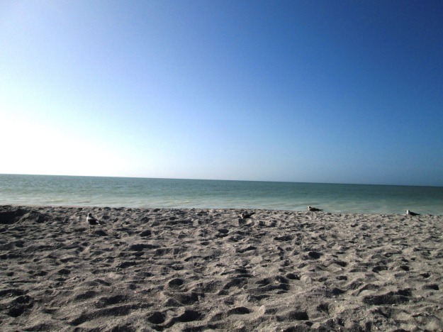 Captiva Beach | www.flonmymind.com