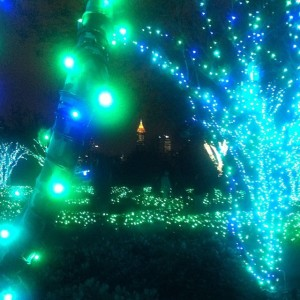 Garden Lights at Atlanta Botanical Gardens | www.flonmymind.com