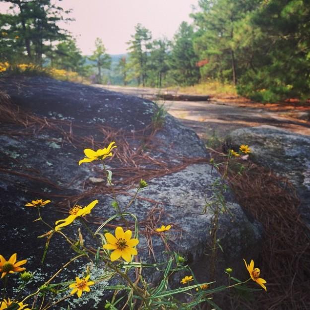 Stone Mountain 9.18.2014